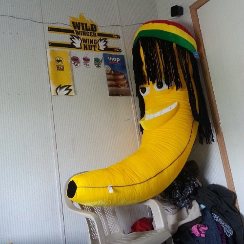 Big ass banana @deeehunny won for me at #sixflags #rastabanana #dreads #niggalookhigh