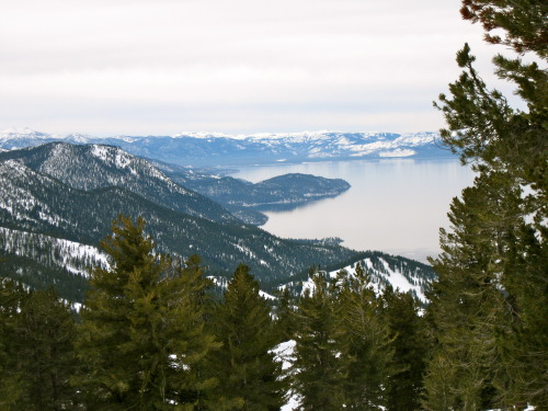 Went snowshoeing up at Lake Tahoe this morning. It's exactly what my body and soul needed!