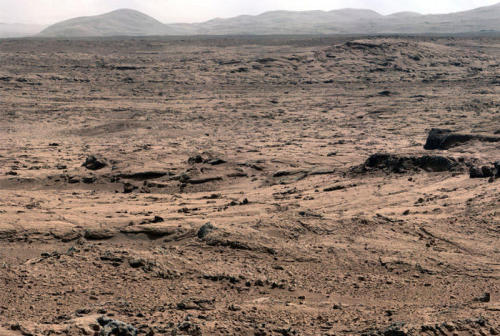 "distant-traveller:  Watery science 'jackpot' discovered by Curiosity  The Curiosity rover hit the science ""jackpot"" and has discovered widespread further evidence of multiple episodes of liquid water flowing over ancient Mars billions of years ago when the planet was warmer and wetter, scientists announced. The watery evidence comes in the form of water bearing mineral veins, cross-bedded layering, nodules and spherical sedimentary concretions. Delighted researchers said Curiosity surprisingly found lots of evidence for light-toned chains of linear mineral veins inside fractured rocks littering the highly diverse Martian terrain – using her array of ten state-of-the-art science instruments. Veins form when liquid water circulates through fractures and deposit minerals, gradually filling the insides of the fractured rocks over time. Shortly after landing the team took a calculated gamble and decided to take a several months long detour away from the main destination of the towering, sedimentary mountain named Mount Sharp, and instead drive to an area dubbed 'Glenelg' and home to 'Yellowknife Bay', because it sits at the junction of a trio of different geologic terrains. Glenelg exhibits high thermal inertia and helps put the entire region in better scientific context. The gamble has clearly payed off. The Chemistry and Camera (ChemCam) instrument found elevated levels of calcium, sulfur and hydrogen. Hydrogen is indicative of water. The mineral veins are probably comprised of calcium sulfate – which exists in several hydrated (water bearing) forms. Curiosity will be instructed to drive over the veins to try and break them up and expose fresh surfaces for analysis. Then she will drill directly into a vein and hopefully catch some of the surrounding material as well. ""This will reveal the mineralogy of the vein filling material and how many hydrated mineral phases are present. The main goal is this will give us an assessment of the habitability of this environment.""  Image credit: NASA"