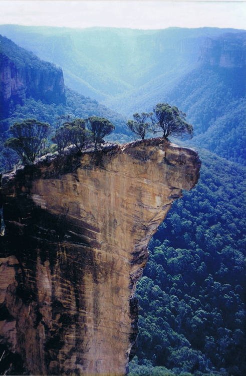 -vvaste:  Hanging Rock, Baltzer Lookout, Blackheath NSW (by JIGGS IMAGES)