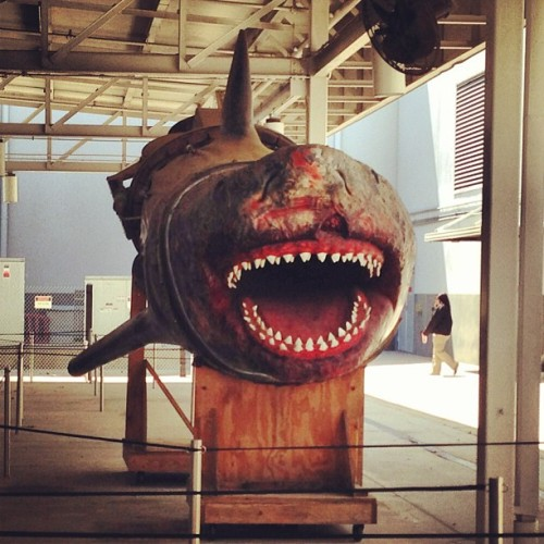 tcutler1984:  Jaws prop at Universal #Jaws #Movies #Universal (at Universal Orlando Entertainment Trailer)