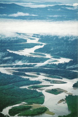 vintagenatgeographic:  Tambopata River, Peru National Geographic | January 1994   Might be going here !!!!!