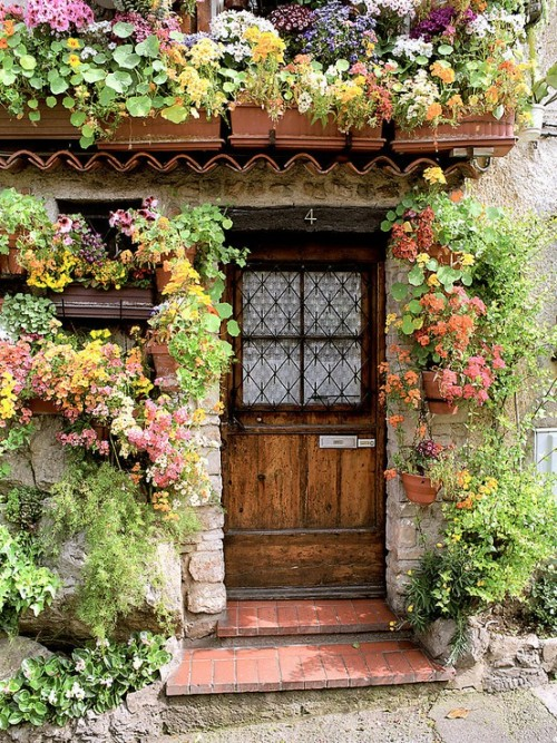 exoticana:  Flower cottage in Antibes (Provence), France
