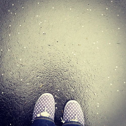 Number 91: polka dots #morningcommuters #keds #blossoms