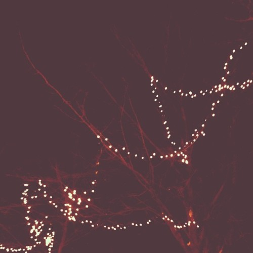 ✨✨ #night #lights #christmaslights #branches #winter #dark #montreal #mtl #minimal #minimalove