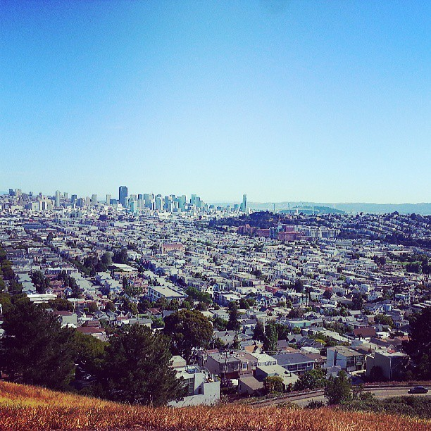 Up on the Bernal Height  (at Bernal Heights Park)