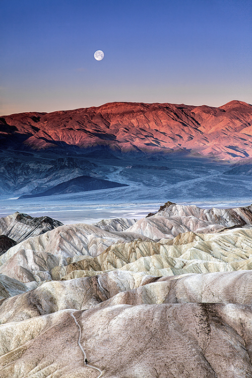 oecologia:  Moonset (Death Valley National Park, California) by ShutterOak.
