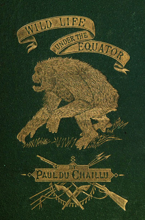 freakyfauna:   Wildlife Under the Equator by Paul Du Chaillu (1869). Found here.