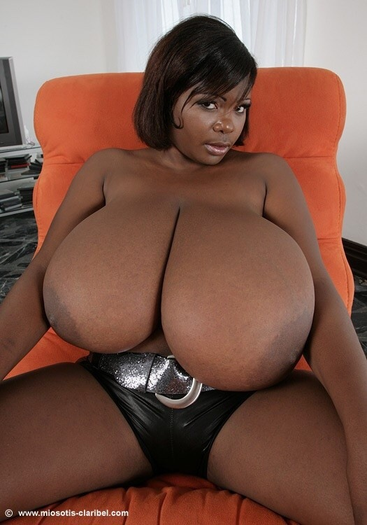 Big black tits bbw webcam