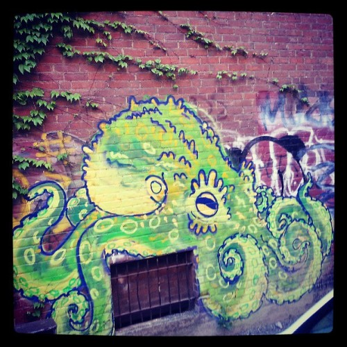 bethdoesntdometh:  Gorgeous graffiti in #Northampton #mass #octopus