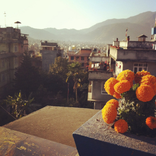 Kathmandu from our Hotel rooftop (by birds & trees)