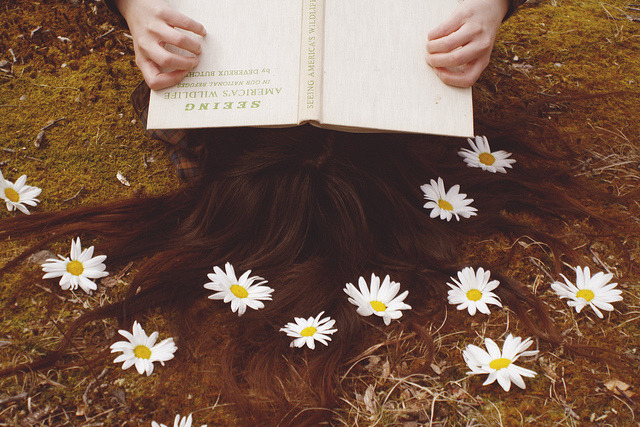 lafleurdesmurailles:  fieldguided by daisies by sunorgan on Flickr.