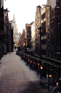 snow winter street europe holland Bicycles Amsterdam The Netherlands