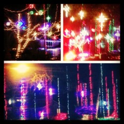 A night of lights. #christmas #lights #christmaslights #beautiful #love #tistheseason #picstich