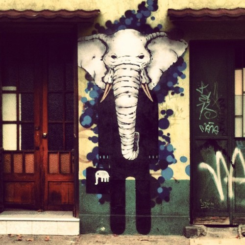 Elephant men  #instagram #instamood #picofday #photofday #picoftheday #men