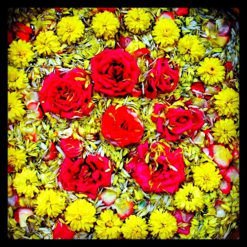 Flower Arrangement (at Kauvery Silk & Handicrafts Emporium)