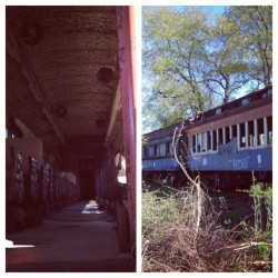 Stopped at an abandoned train car and snapped some photos. These photos are the ones i took w/ my phone. #photography