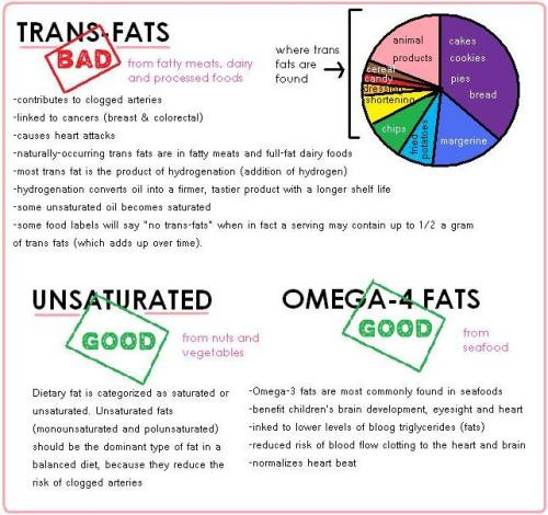 shapemytorso:  proteins, fats, carbs, vitamins, minerals, water, roughage the facts, presented to you in a fun and easy to remember fashion! here are the other pages