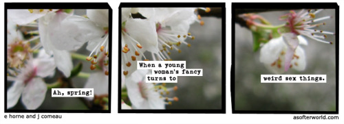 softerworld:  A Softer World: 950 (now where did i leave my fancy… OH GOD WHAT ARE YOU DOING) buy this print