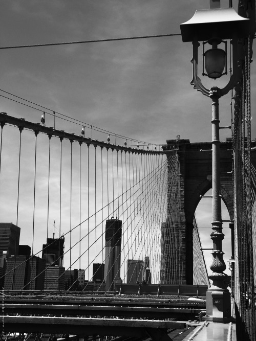 Brooklyn Bridge, NYC. 2012.