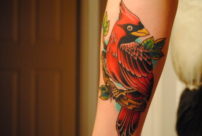this is my cardinal tattoo! Got this done on Jan 29, my second Tattoo, Done My Jamie at Brightside Tattoo in Halifax. He's absolutely fantastic! This piece took 5 hours total. Very happy with it
