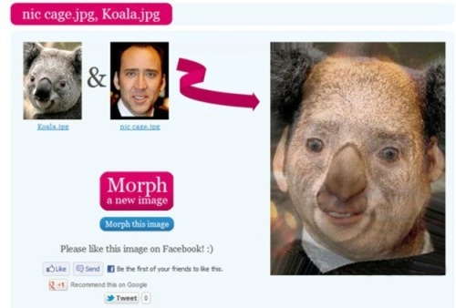 Nicolas Cage's face morphs perfectly with everything!