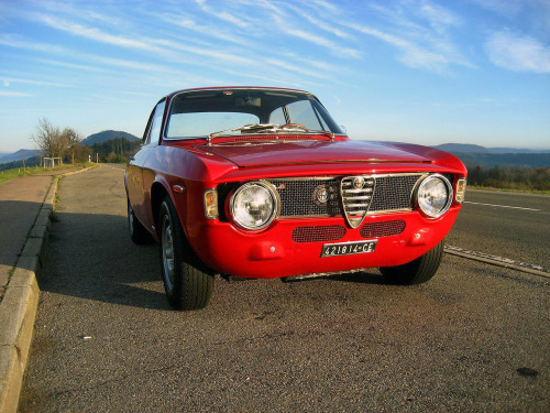 archaictires:  1965 Alfa Romeo Giulia Sprint GTA 1600  Love these I do!