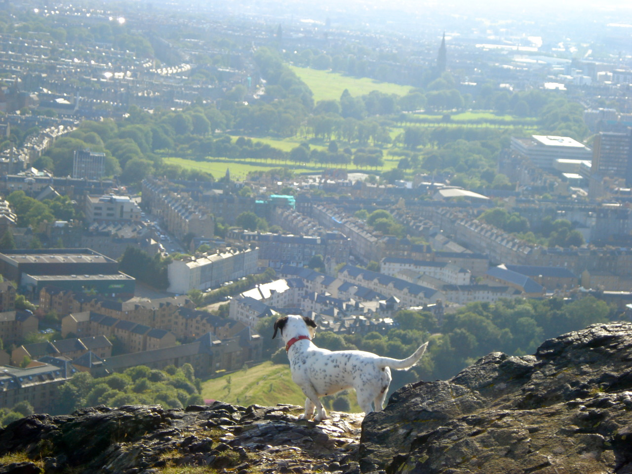 Edinburgh, Scotland on Arthur's seat!