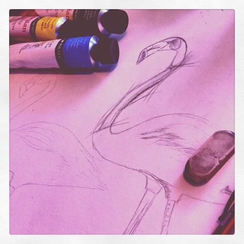 It's a studio day. #sketch #studio #art #flamingo