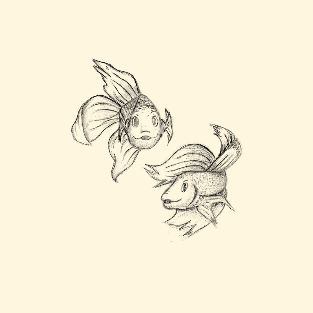 I challenged myself to practice my line in the drawings and put the zodiac as a briefing.3. fish #zodiac#sketch#practice#fish