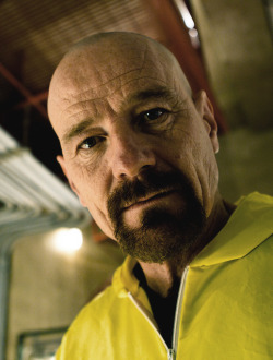 thevuas:  Bryan Cranston as Walter White  by  nelsoncragg