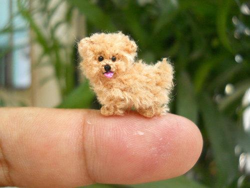 moarrrmagazine:Miniature dogs bySuAmi