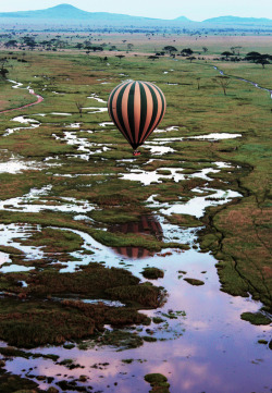 Balloon drifts over the Serengetti, Tanzania (by: aussiePT1986)