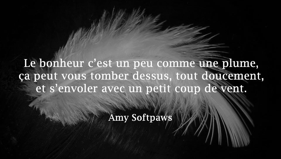 Amy Softpaws, L'amour et le manque : deux sentiments étroitement liés