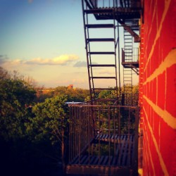 """Wall Crawler"" #abrooklynsoul #brooklynpoets #Brooklyn #FireEscape #NewYorkCity #NYC #NewYork #igersofbk #made_in_ny #EastFlatbush #Flatlands #UrbanLandscape #UrbanDwellings #Trees #Sunset #UniquePerspectives #explore_brooklyn #explore_community #explore_nyc  (at Kings Village)"