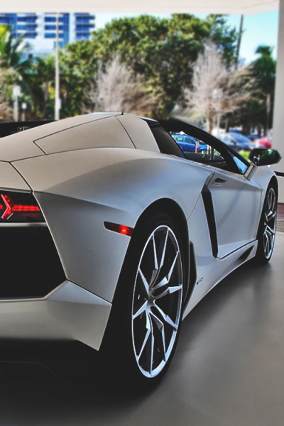 johnny-escobar:  Aventador Roadster