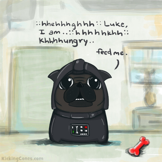 The hunger is strong with Darth Pug.