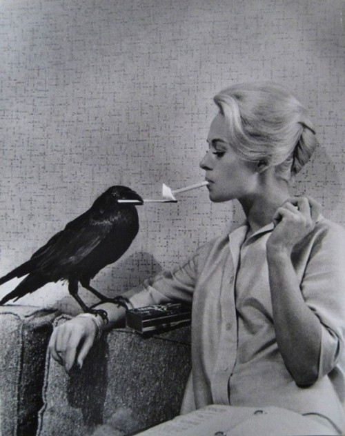 afragmentcastadrift:  From Retronaut - A crow lights Tippi Hedren's cigarette Photo by Philippe Halsman