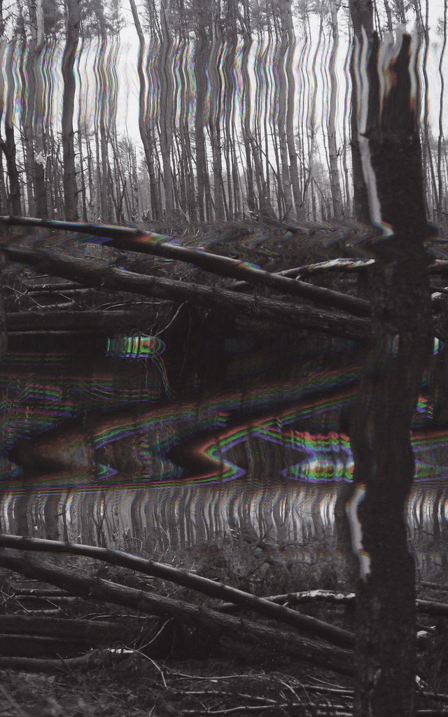 pacifiqa:  Glitch Trees II (by Jon Testa)