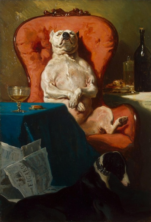 Pug Dog in an Armchair (1857), oil on canvas, Hermitage Museum | artwork by Alfred de Dreux