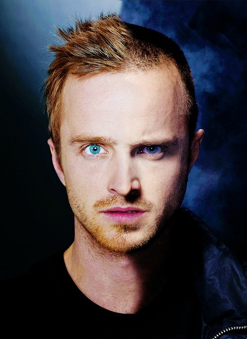 floralpantsandtvscreens:  Evolution of Pinkman