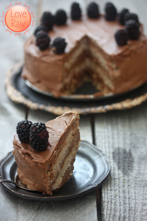 Raw Layered Chocolate and Vanilla Nut Free Cake