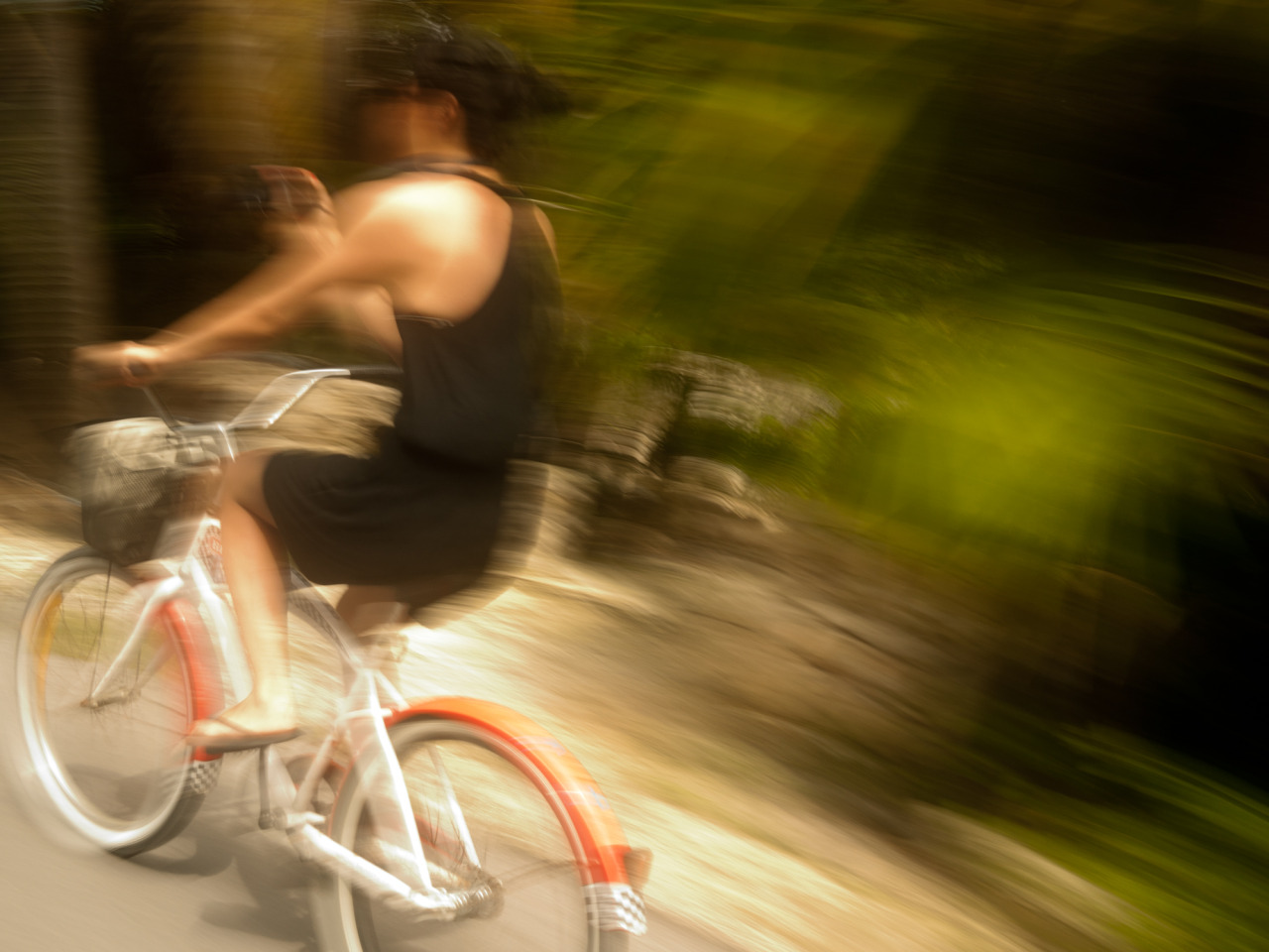 6/9/12 Biking through the jungle (photo by naveen)