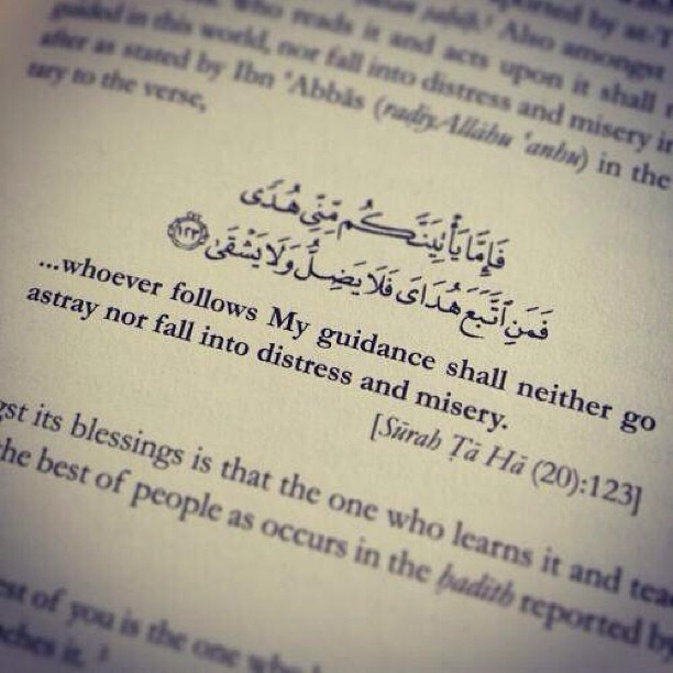 "islamicthinking:  ""… whoever follows My guidance shall neither go astray nor fall into distress and misery."" (20:123)"