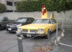 Chicken car is the only car you need.