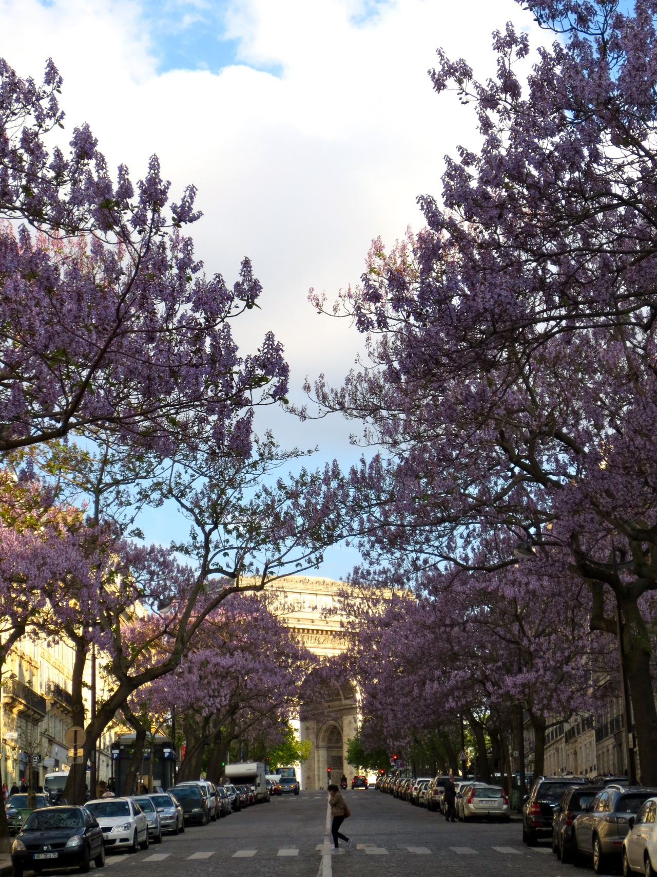 newsweek-paris-france:  The weather's still chilly, but the trees finally quit waiting for spring: Avenue Carnot on Friday afternoon in Paris, France.