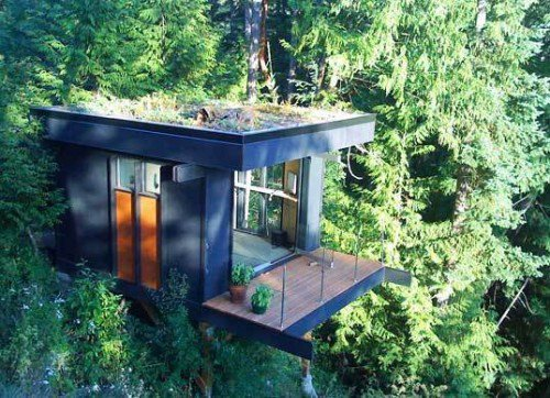 thekhooll:  The Office Treehouse Office by Peter Frazier is set amongst the trees above Chuckanut Bay in Bellingham, Washington.  a house fit for a monkey with overstock of bananas and coconut juice. where's the irrigation system and wireless????? sigh. want this.