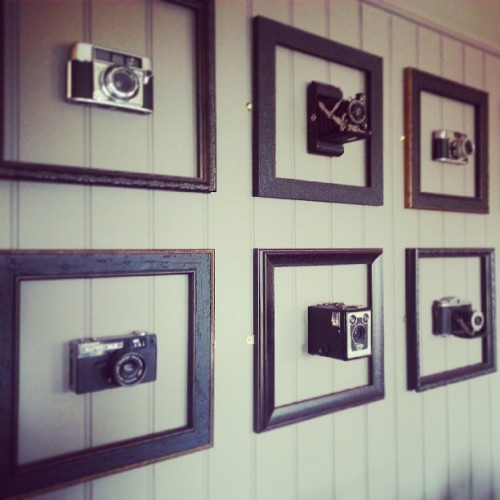 Beautiful vintage cameras on the pub wall…I wanted to steal one but I wasn't allowed because of the law and everything