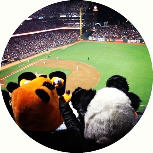 giants game with my better half, @amusethemuses 🐼💗🐱⚾ PAWS UP! GO GIANTS!!! #sf #sanfrancisco #sfgiants #giants #baseball #mlb #pixarnight #bffs #pandas #pandaloves #breastfriends #soley  (at ATT Park)