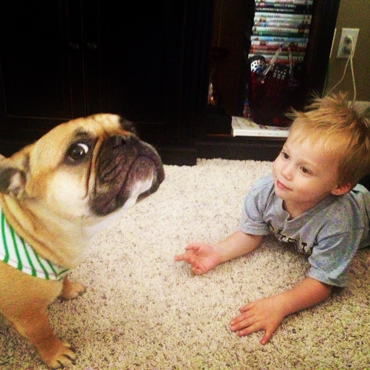He loves Lucy. Lucy is not so sure. Photo/caption via Imgur